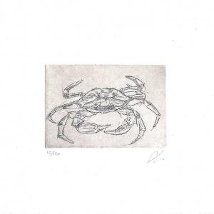 lit_crab